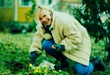 SPP, gardening